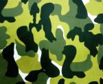 Army printed swimwear tricot fabric PPF-012