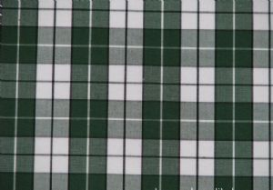 Popular nylon yarn dyed plaid fabric CWC-021